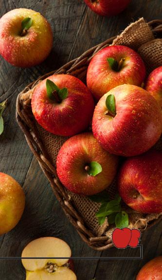 Cincinnatus Market Fresh Produce